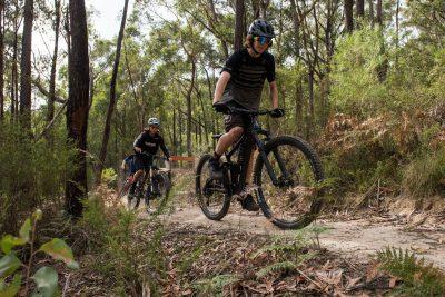 Ride Yarra Ranges - Mountain bikers riding single track in Waburton