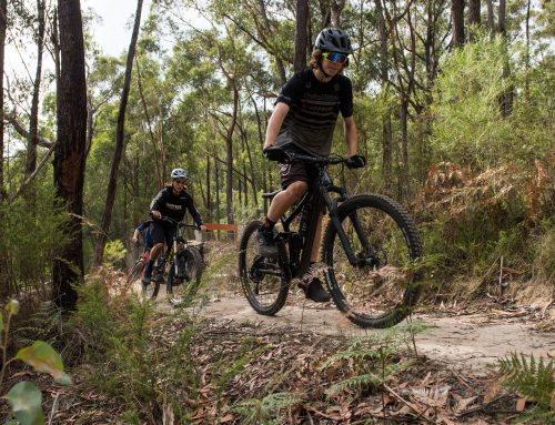 Warburton MTB Destination project update