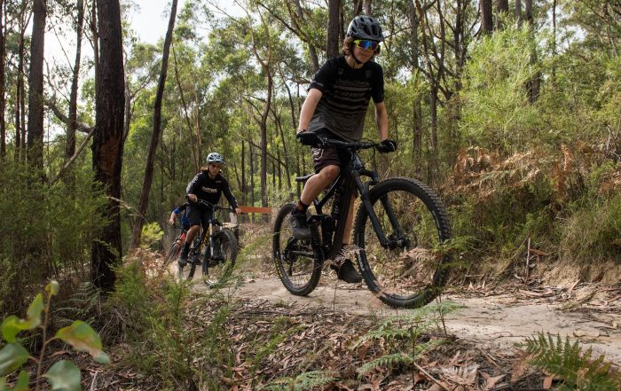 Ride Yarra Ranges - Mountain bikers riding single track in Waburton