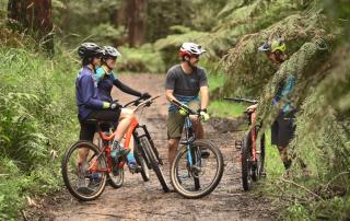 Ride Yarra Ranges - Mountain bikers at Silvan
