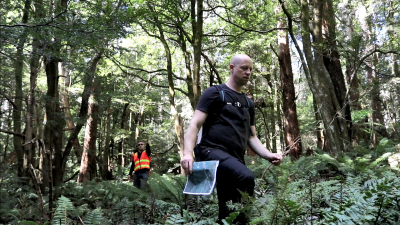 Project team members walking through the forest at Mt Donna Buang while completing ground truthing