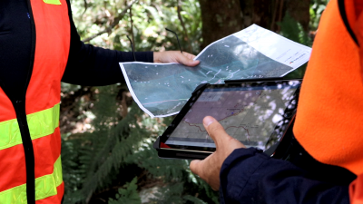 Two project team members looking at ground truthing maps on paper and ipad at Mt Donna Buang