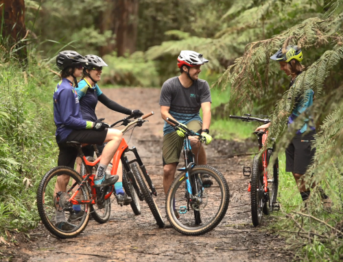 Warburton Mountain Biking Project Focus Groups