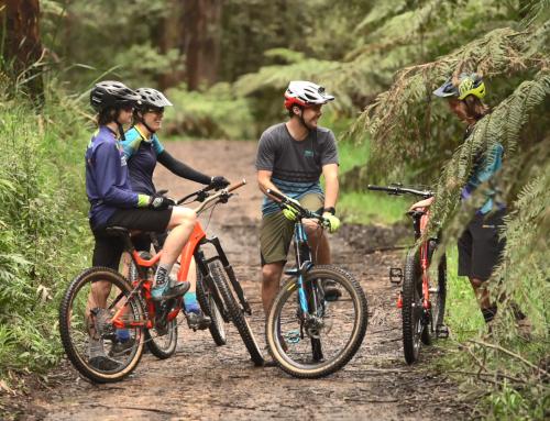 Warburton Mountain Biking Project Focus Groups