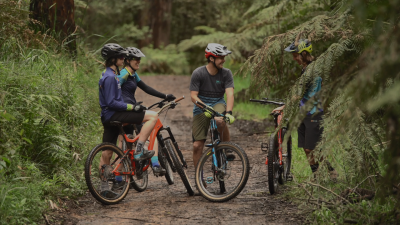Four mountain bikers talking happily mid ride at Silvan surrounded by green ferns and grass