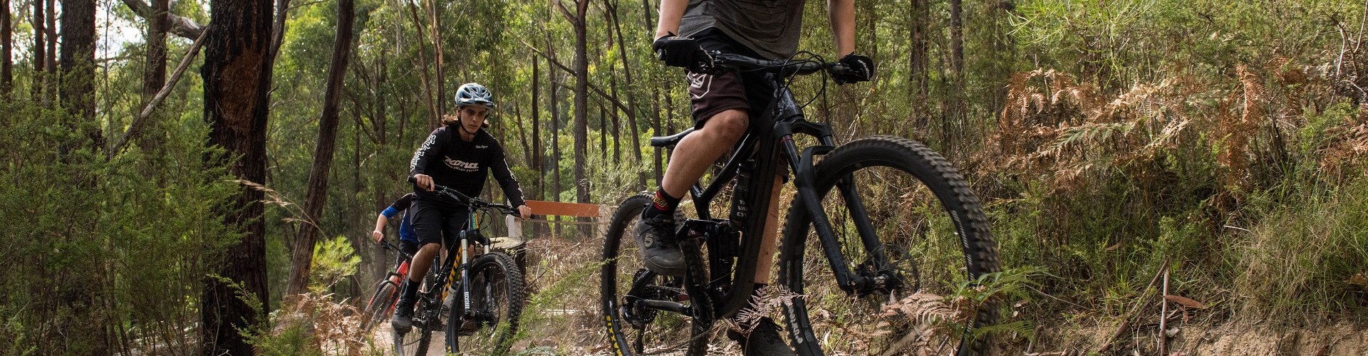 Group of three mountain bikers riding up Hey Hey My My trail in the forest at Wesburn