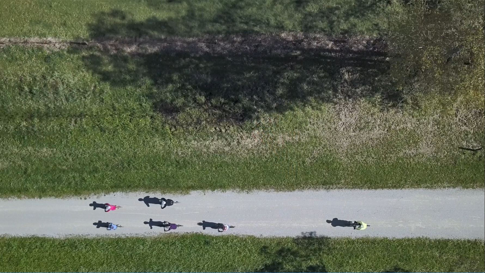 Group of four riders followed by fifth rider on Yarra Valley Trail birds eye view
