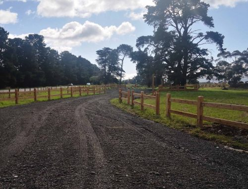 New Yarra Valley Trail car park now open at Yering